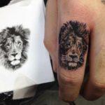 lion chris