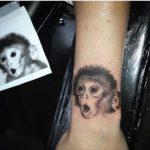 monkey chris